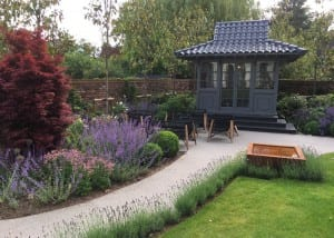 Bushy Business - Surrey Planting Project; Esher, Surrey