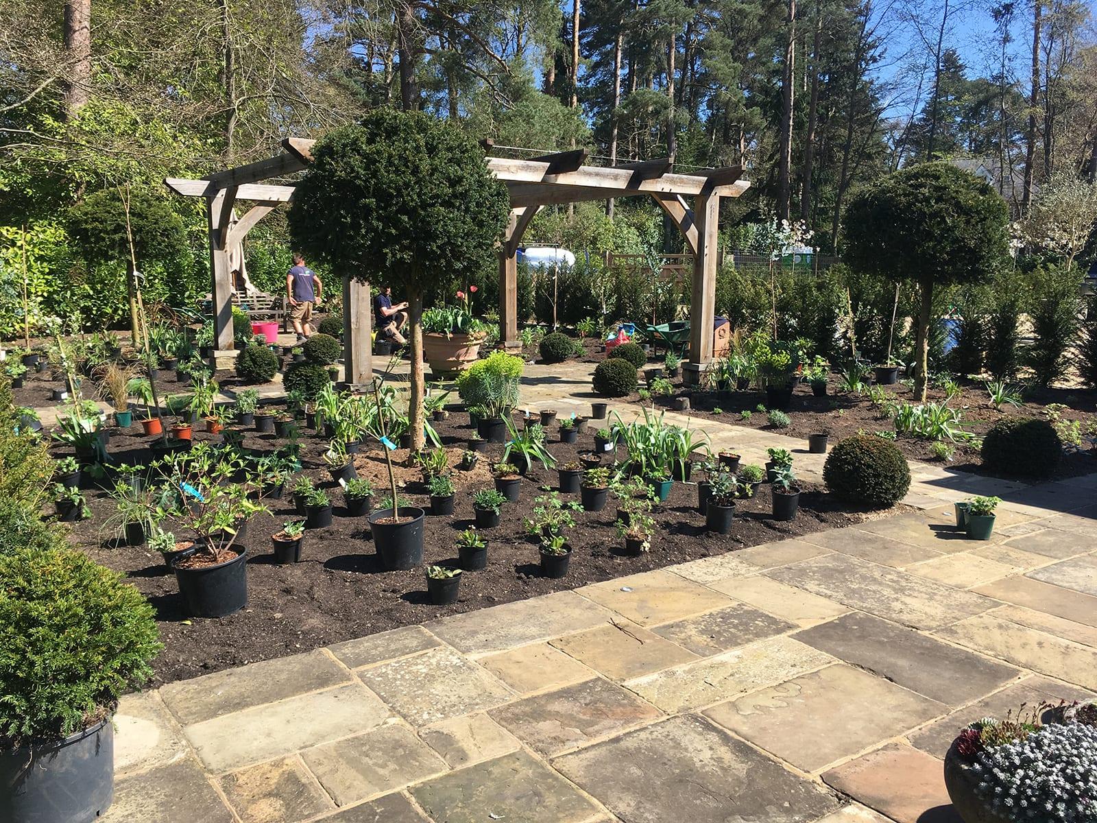Bushy Business Gardening - Soft Landscaping
