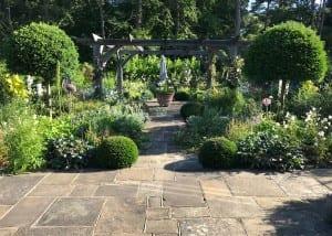 Bushy Business - The Cutting Garden; Farnham, Surrey