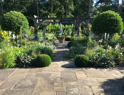 The Cutting Garden; Farnham, Surrey