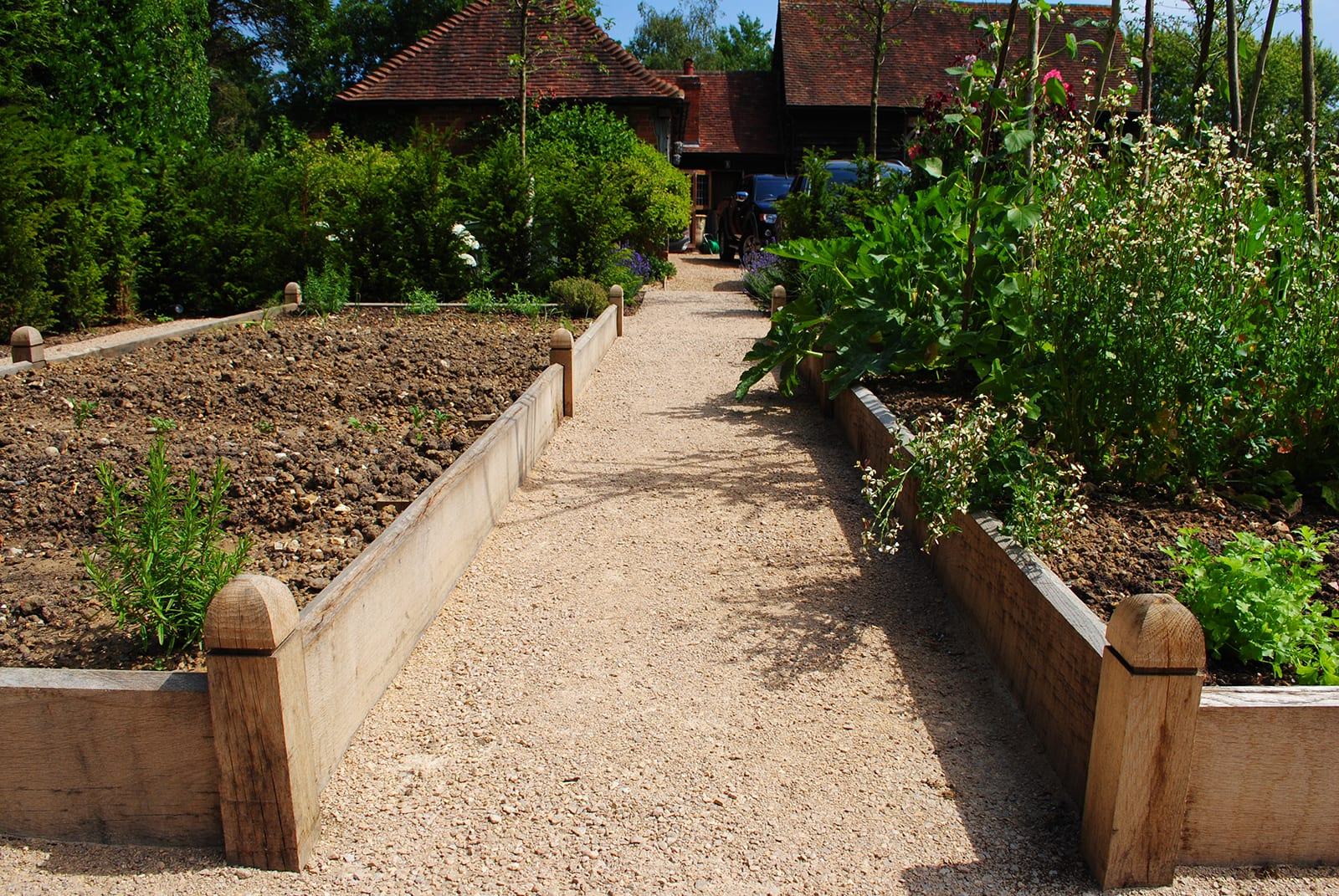Bushy Business - The Kitchen Garden; Horsley, Surrey