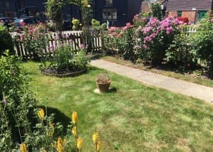 Bushy Business - Sussex Front Garden; Loxwood, West Sussex