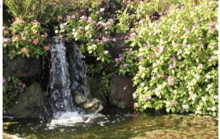 Fun In The Garden – Issue 14